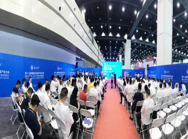 郑州展览设计方案